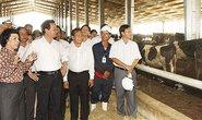 Nghệ An cần phát triển cây công nghiệp và chăn nuôi bò sữa