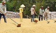 VFA được ưu ái, sao lại ép nông dân?