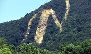 """Hiện tượng """"lạ"""" trên núi ở Bình Định"""
