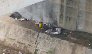 Phát hiện xác người mặc đồ lót đang phân hủy