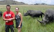 Bị húc xuyên ngực vì chụp hình với tê giác