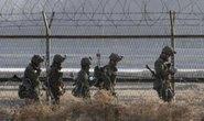 """Lính Hàn Quốc ném lựu đạn vào """"vật thể lạ"""" ở biên giới"""