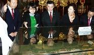 Sớm ký kết Hiệp định Thương mại tự do song phương Việt - Hàn