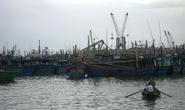 Lo mất thương hiệu cá ngừ Việt Nam