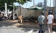 Lao xe máy vào tường, người nước ngoài tử vong