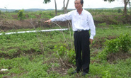 Chủ trang trại xin cho Lê Bá Mai tại ngoại để chữa bệnh