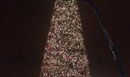 Đón Giáng sinh sớm với cây thông siêu khủng
