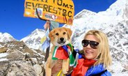 Chú chó đầu tiên chinh phục đỉnh Everest