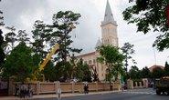 Đà Lạt: Hàng tùng cổ thụ ở Nhà thờ Con Gà bị hạ sát