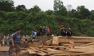Chết thảm dưới 100 tấn gỗ hương