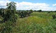 Vụ công ty Trung Quốc mua đất ở Bình Thuận: Có dấu hiệu lừa đảo