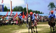 Cười vỡ bụng ở hội đua ngựa Phú Yên