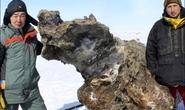 Nga: Tìm thấy xác voi ma mút dính máu và thịt