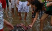 """Hàng trăm người xem xác """"cụ rùa"""" 100 kg dạt bờ"""