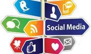 Chống phá nhà nước trên mạng xã hội, phạt 100 triệu đồng