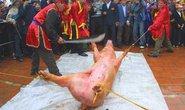 Dân mạng choáng với clip 'chém lợn'