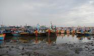 Cảng bị bồi lấp, hàng trăm tàu mắc cạn