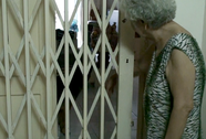 Tranh cãi gay gắt việc nuôi chó, mèo ở chung cư Sài Gòn
