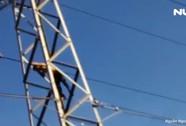 Giải cứu người đàn ông nghi ngáo đá leo cột điện