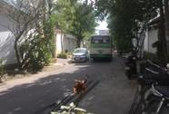 Bất an vì xe buýt chạy vào khu dân cư