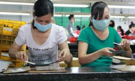 TP HCM: Lao động chuyển việc sau Tết không đáng kể