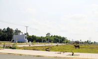 """Đất nền Sài Gòn chỉ bớt """"nóng"""", giá không giảm mạnh"""
