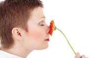 Bí ẩn mùi hương ma cảnh báo bất ổn ở người trưởng thành