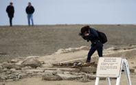 Mỹ: Thị trấn ma trồi lên từ lòng sông ở California
