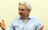 Assange có thể ở sứ quán Ecuador mãi mãi