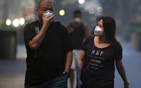 Singapore khổ sở vì cháy rừng ở Indonesia
