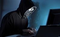 Tin tặc tham gia chống khủng bố