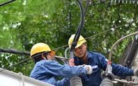 Điện lực TP HCM: Hướng đến quyền lợi khách hàng