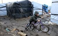 Pháp: Dẹp rừng tị nạn, mất hút 129 trẻ em