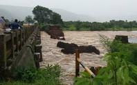 Sập cầu ở Ấn Độ, 2 xe buýt rơi thẳng xuống dòng nước lũ
