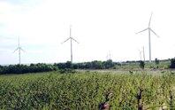 Điện gió chưa hấp dẫn