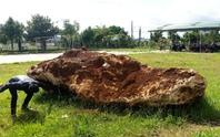 Bắt giữ tảng đá quý nặng hơn 20 tấn