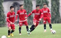 Tăng 5 bậc, tuyển Việt Nam vào tốp 20 châu Á