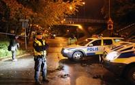 Một loạt vụ nổ súng tại Mỹ, Thụy Điển