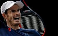 Djokovic: Andy Murray xứng đáng số 1 thế giới