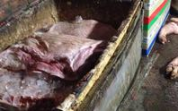 Thất kinh với 2 tấn thịt heo thối sắp vào bếp ăn công nhân