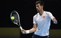 Djokovic quyết đòi lại uy danh