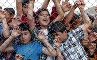 Người di cư kén chọn