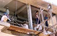 Nhiều việc làm cho lao động thời vụ
