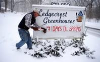 Mỹ: Bão tuyết khiến 7 người chết