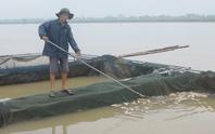 Thủy điện Hòa Bình xả lũ, hơn 200 tấn cá lồng chết ngạt