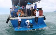 Phú Quốc thả 1 triệu con ghẹ xuống biển