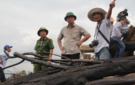 Để xảy ra phá rừng, chủ tịch xã mất chức