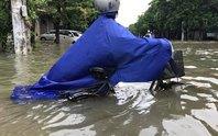 Bắc Trung Bộ khốn đốn vì mưa lũ