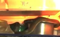 Nắng nóng thiêu đốt, rộ nạn trăn, rắn chui vô tủ lạnh giải nhiệt