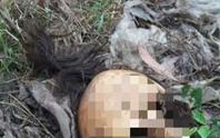 Xác chết nữ trong khu du lịch bị bỏ hoang